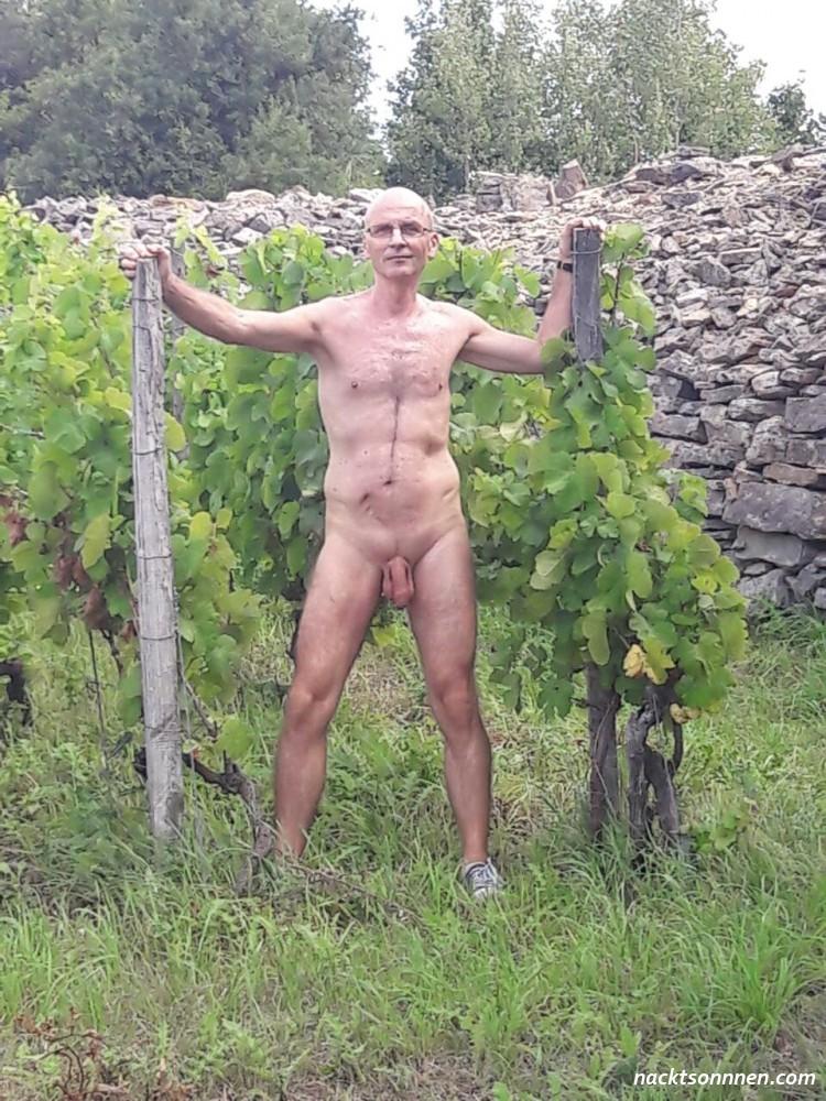 Nackt Im Weinberg